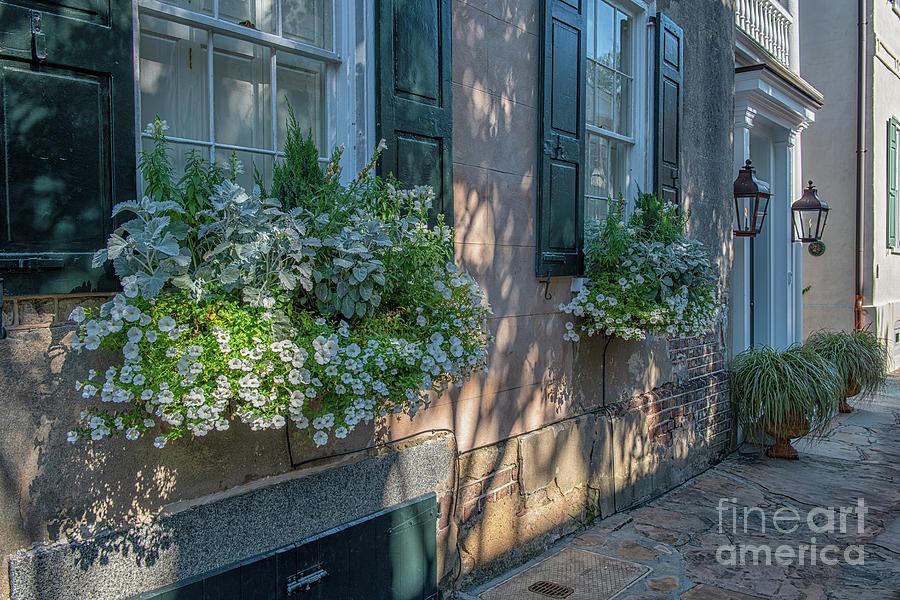 Walking Charleston Streets Photograph