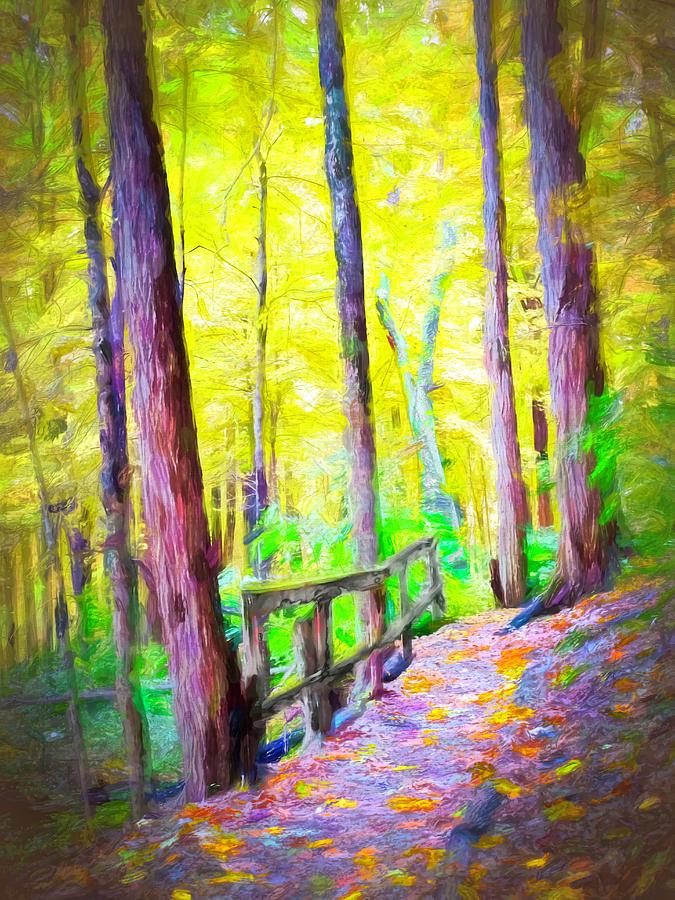 Walking in the Woods by Jack Wilson