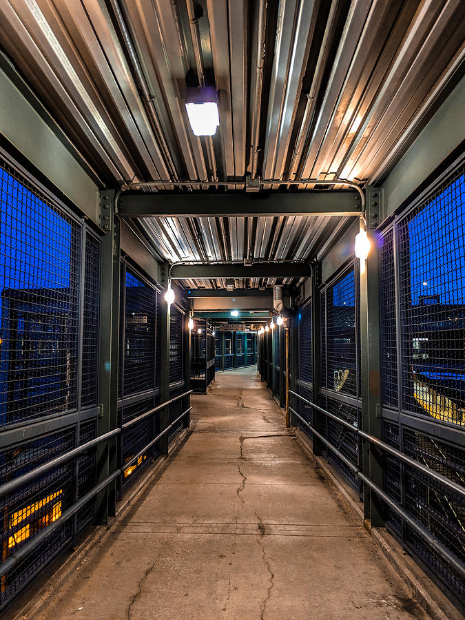 Walkway by Christopher Brown