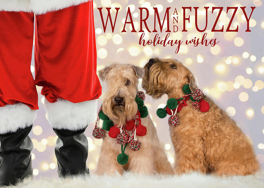 Warm and Fuzzy by Rebecca Cozart