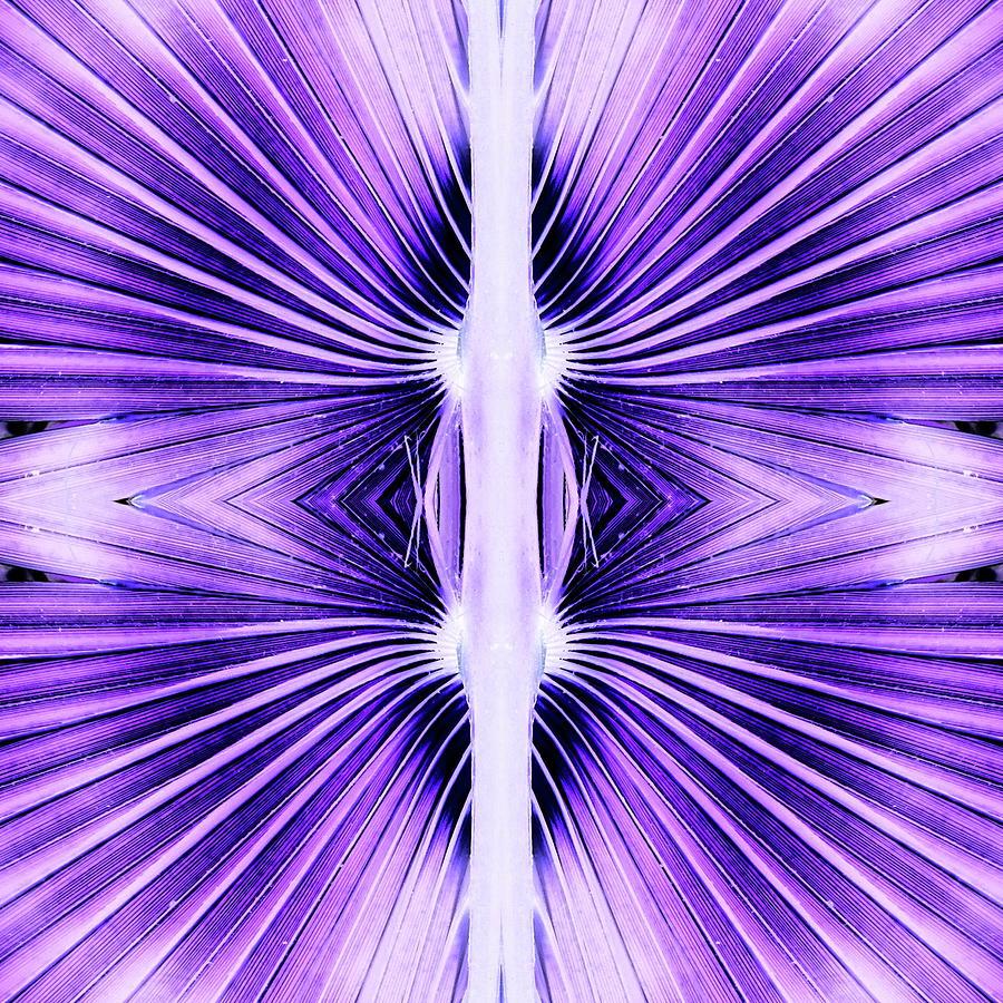 Warp Speed Digital Art - Warp Speed by Teresamarie Yawn