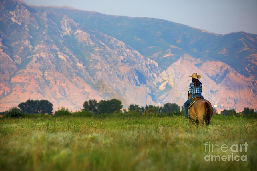 Wasatch Mountain View by Diane Diederich