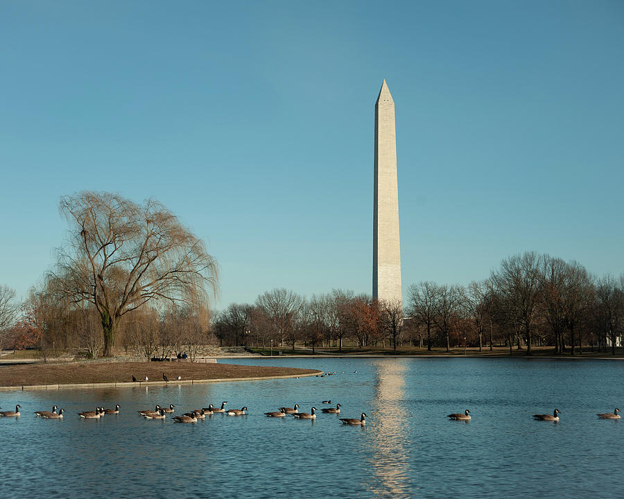 Washington D.C. by Miguel Winterpacht
