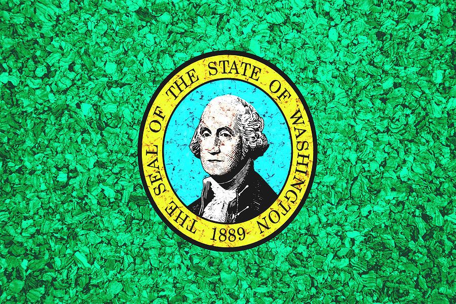 Washington State Flag Photograph