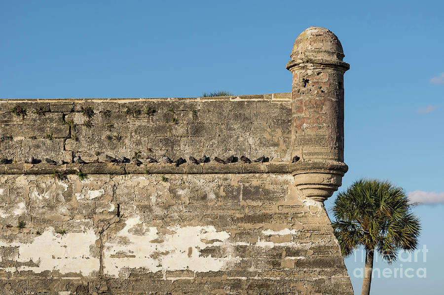 Watch Tower at Fort Marion in St. Augustine by Les Palenik