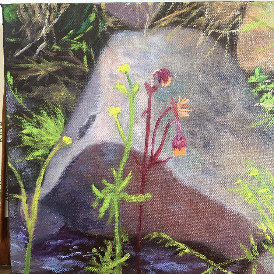 Chocolate Painting - Water Avens, Chocolate Cove by Laura Roberts
