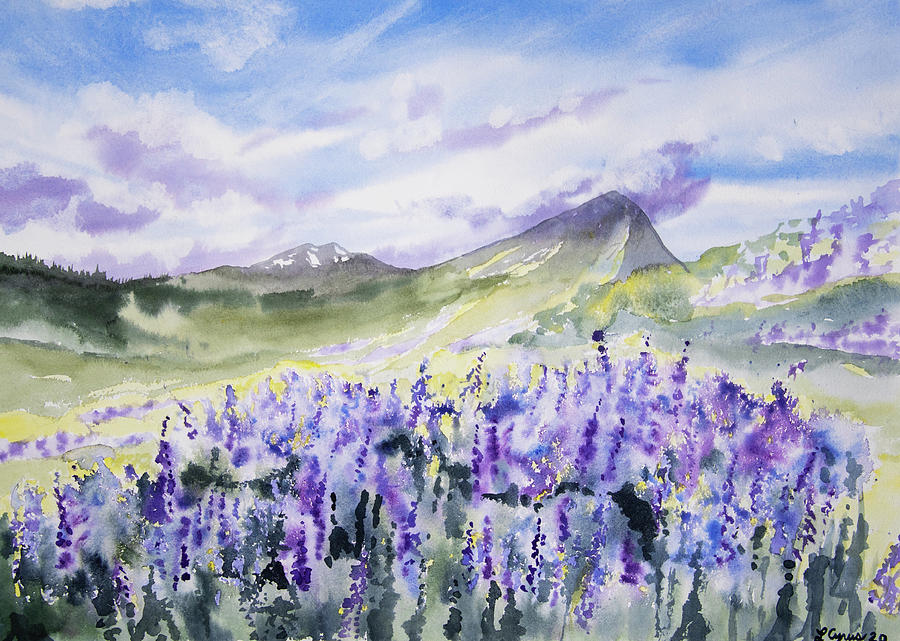 Watercolor - Colorado Summer Lupine Mountain Landscape Painting