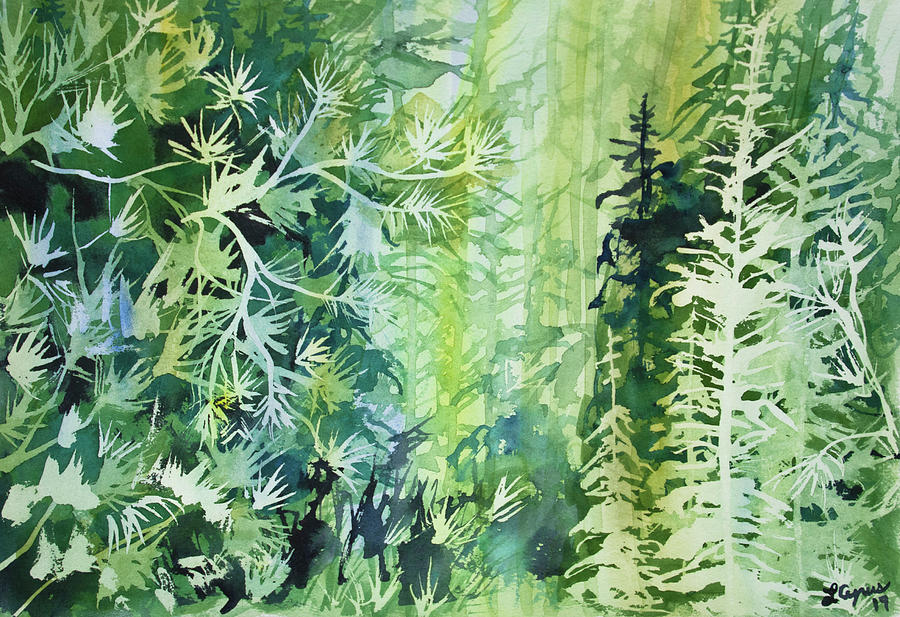 Watercolor - Conifer Forest Design by Cascade Colors