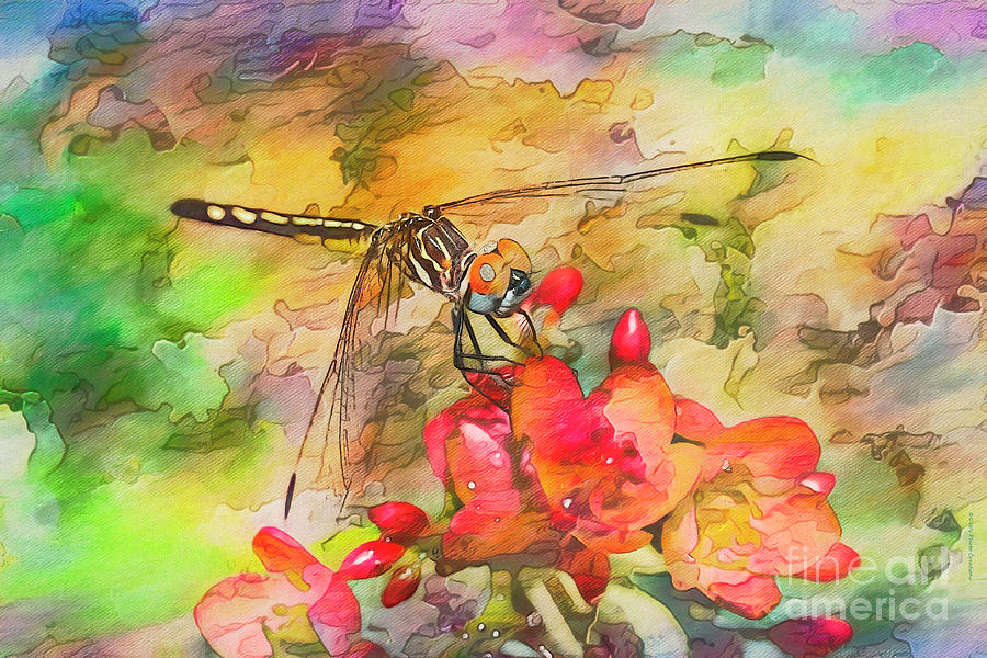 Watercolor Damsel by Deborah Benoit