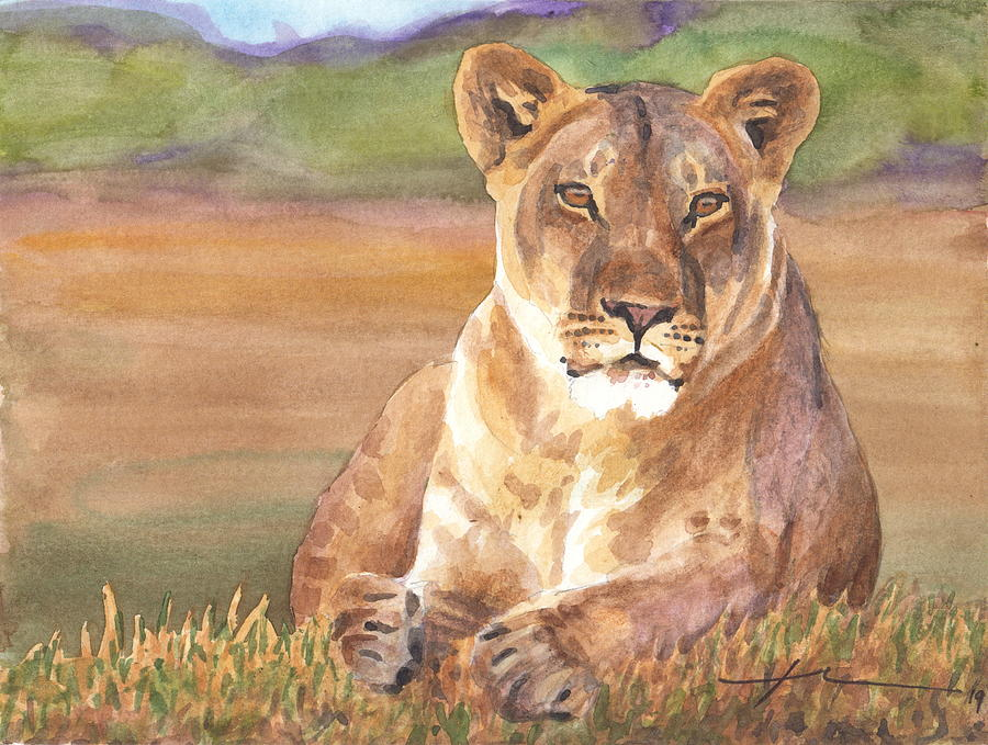 Watercolor Lioness Painting by Mike Theuer