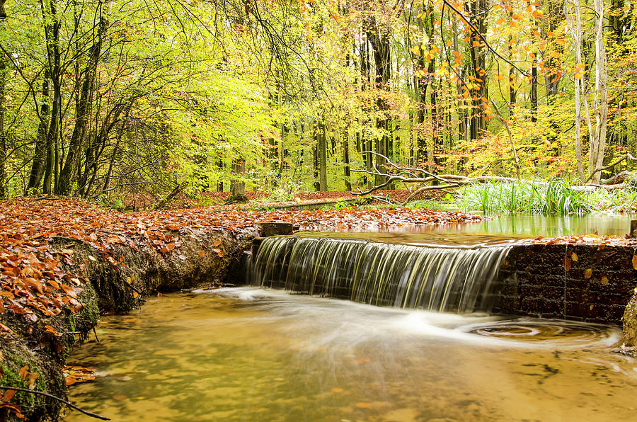 Waterfall in an autumn forest by Frans Blok