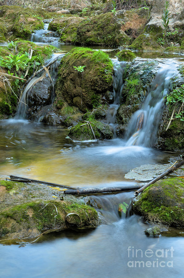 Tranquil Photograph - Waterfalls In Pego Do Inferno. Tavira by Angelo DeVal