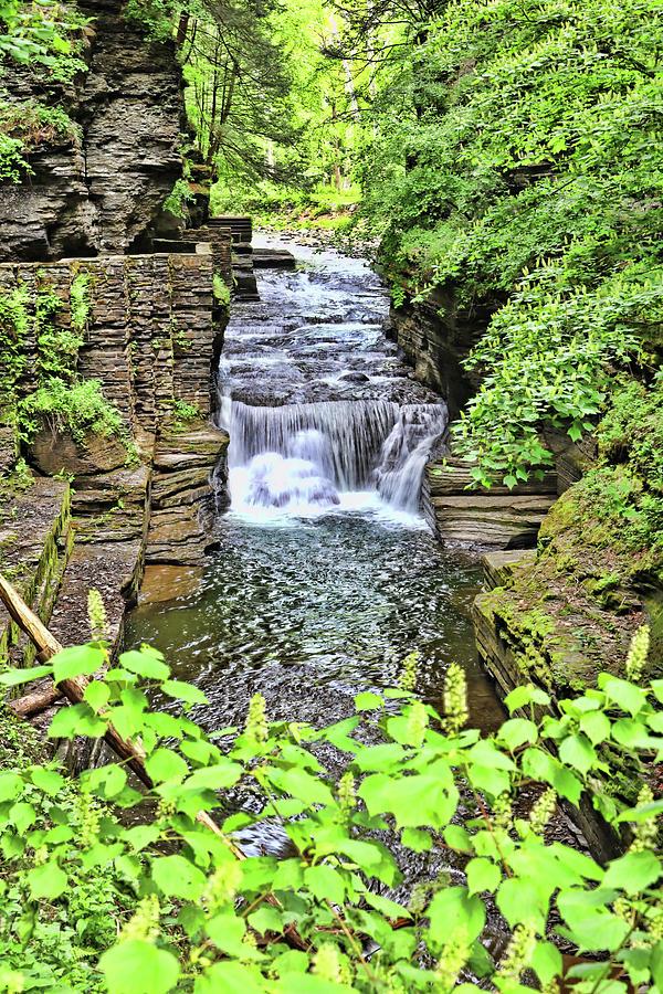 Waterfalls Of Robert H. Treman State Park - Enfield Creek Photograph