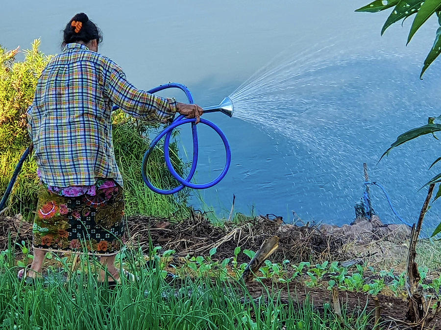 Watering the Mekong River by Jeremy Holton