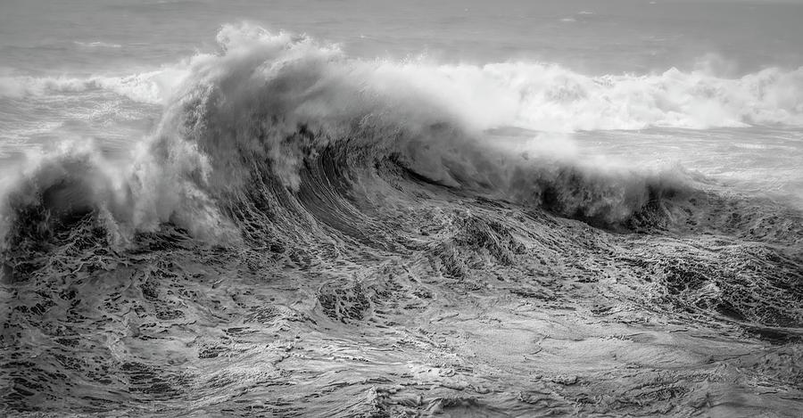 Wave Dance 011220 BW by Bill Posner