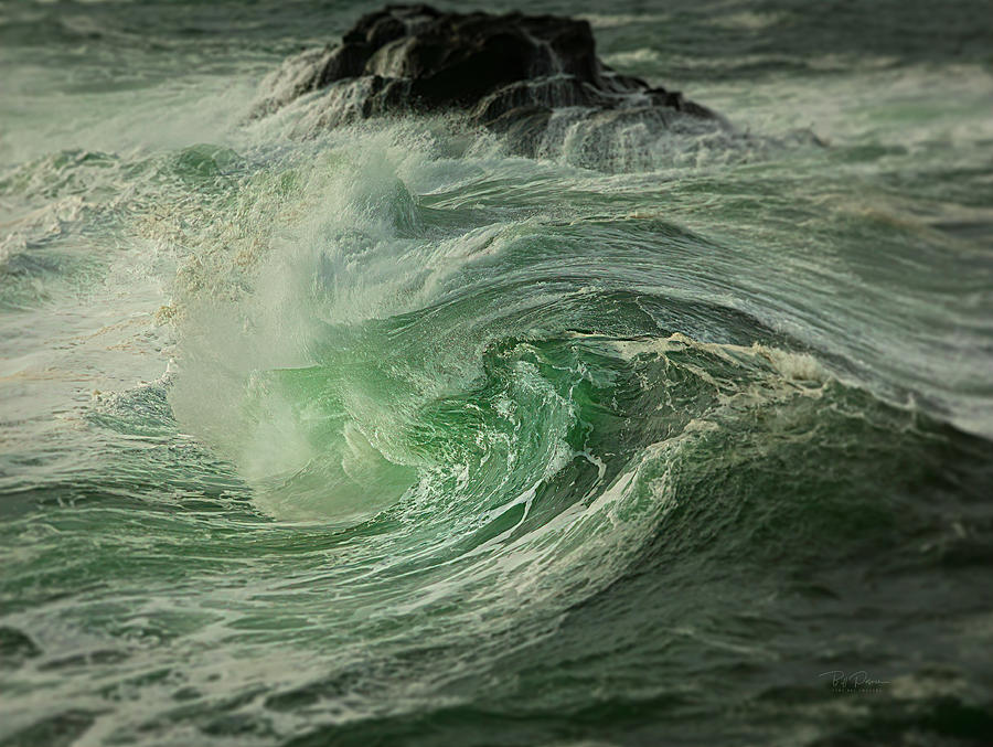 Wave sister by Bill Posner