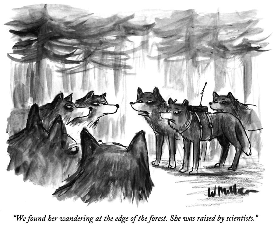 We Found Her Wandering Drawing by Warren Miller