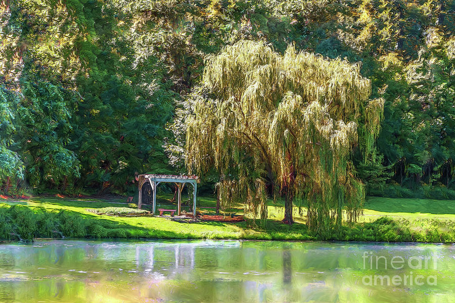 Weeping Willow Landscape Painting by Jennifer White
