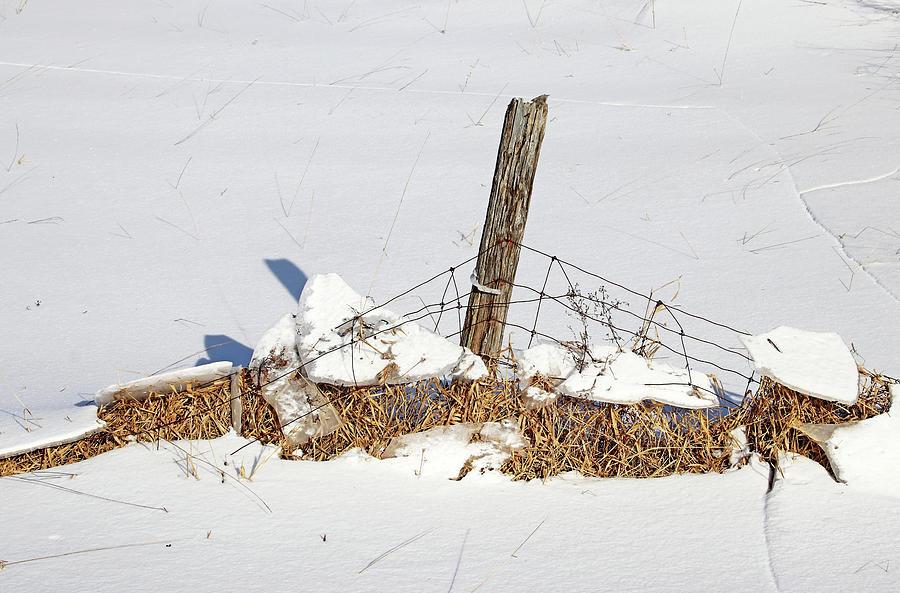 Weight Of Winter by Debbie Oppermann