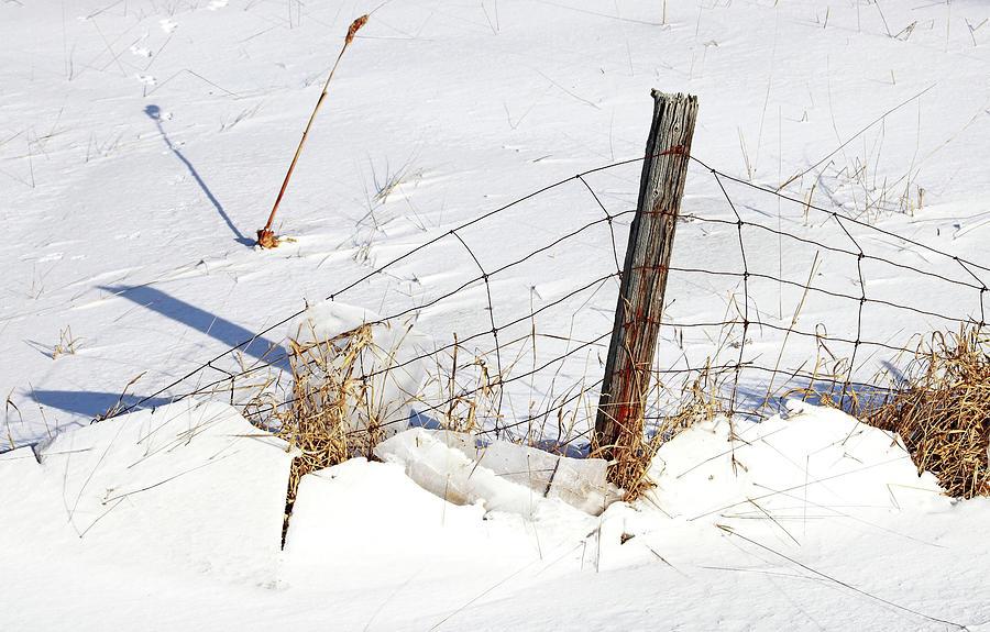 Weight Of Winter I by Debbie Oppermann