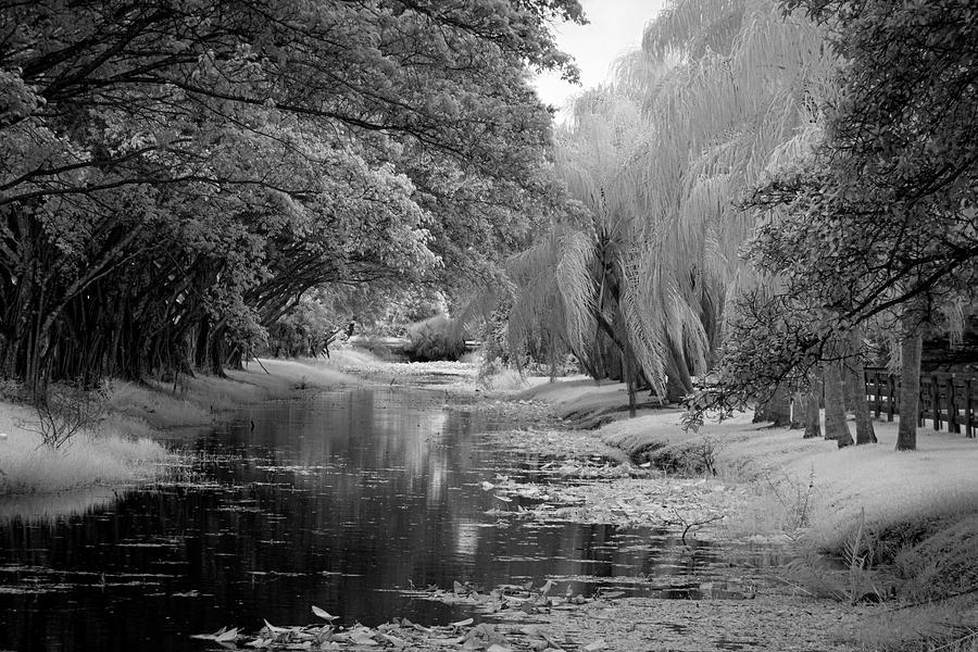 Wellington Canal Ir 0607 Photograph