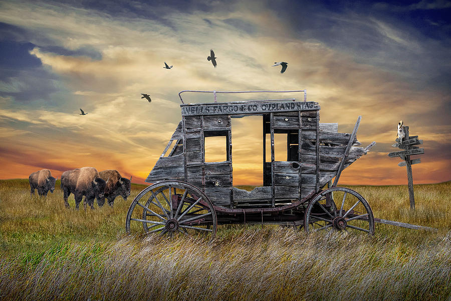 Wells Fargo Overland Stage Coach With Buffalo On The Prairie Photograph