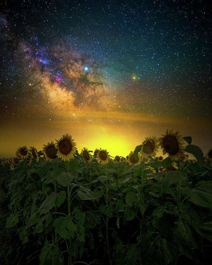Milky Way Photograph - Were In This Together by Aaron J Groen