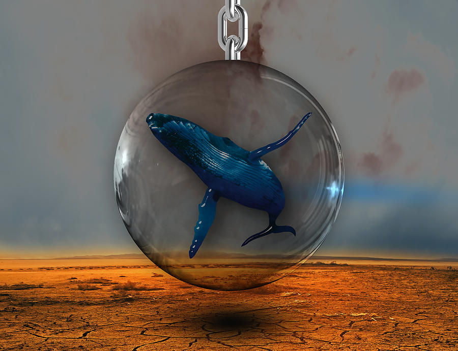 Whales Mixed Media - Whale Story 2 by Marvin Blaine