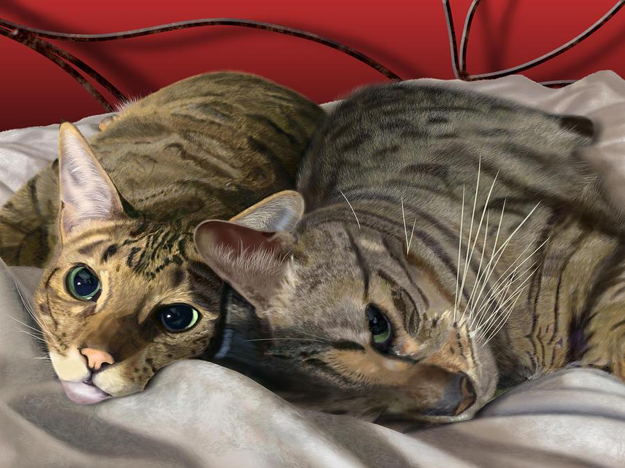 What's New Pussycat? by Nigel Follett