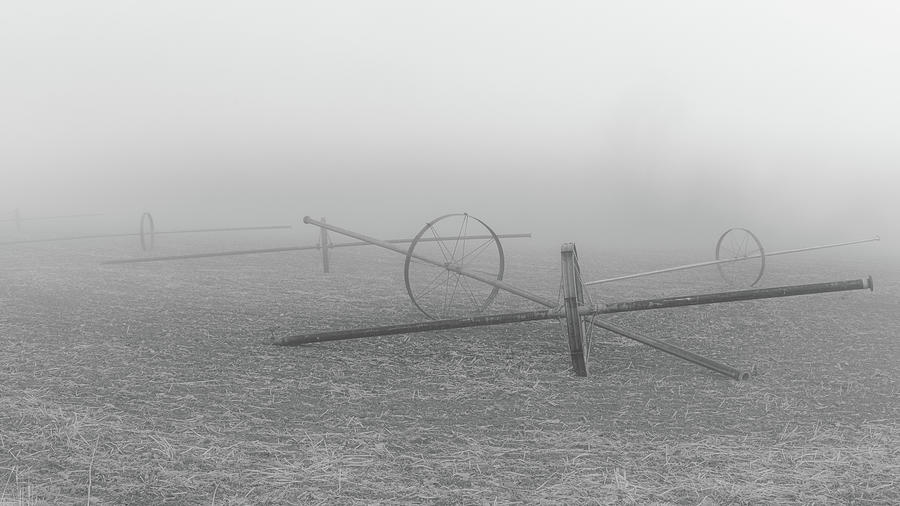 Wheel Lines On Wnter Break Photograph