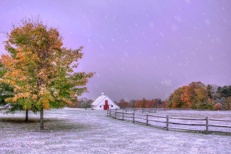When Autumn Meets Winter Photograph