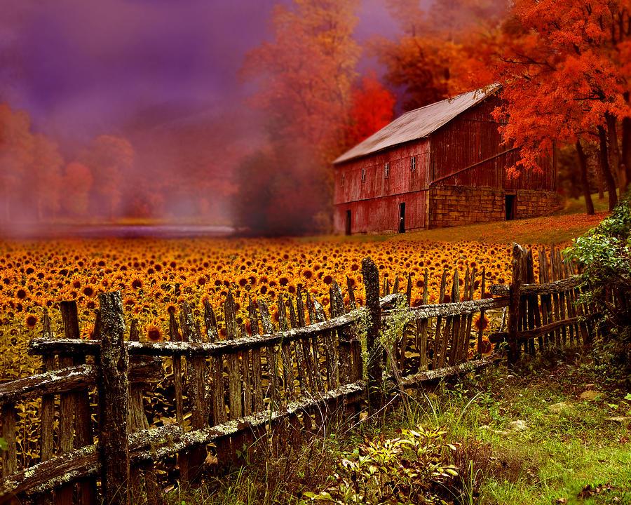 When Fall Comes Digital Art