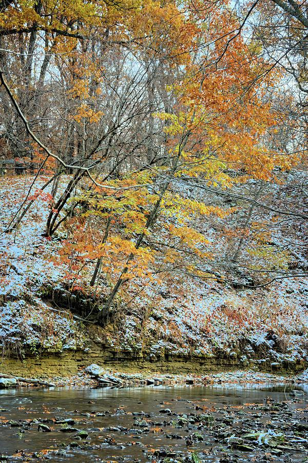 River Photograph - When Seasons Collide by Bonfire Photography