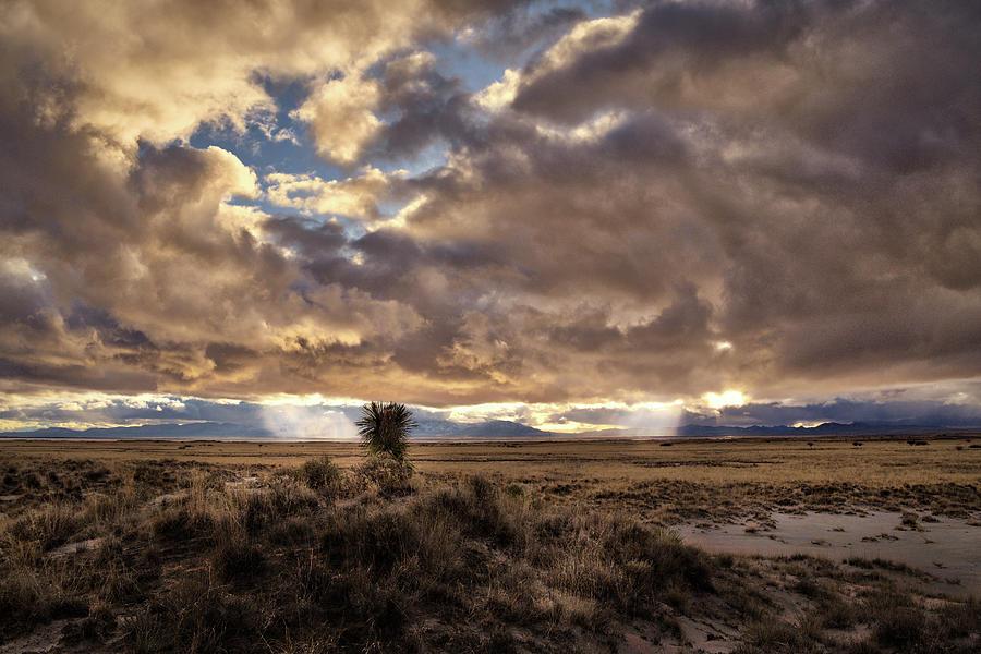 Where Heaven and Earth Meet by Chance Kafka