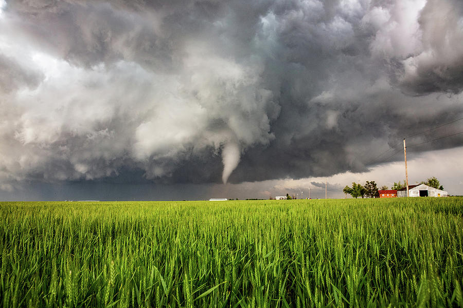 Whims Of The Weather - Tornado Over Wheat Field In Texas Photograph