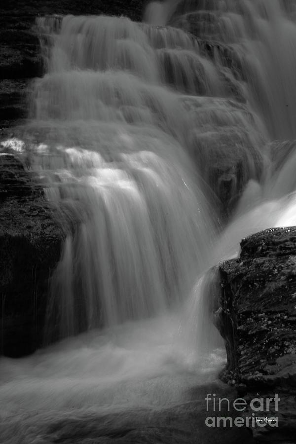 Whitaker Falls - BW by Tony Baca