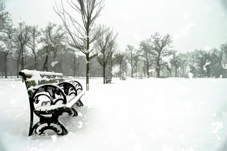 Forest Park Digital Art - White Blanket Bench - Oil Painting by Chris Mautz
