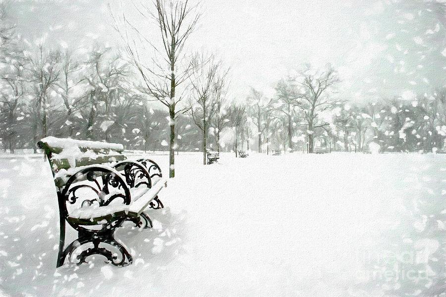 Forest Park Digital Art - White Blanket Bench - Simple Sketch by Chris Mautz