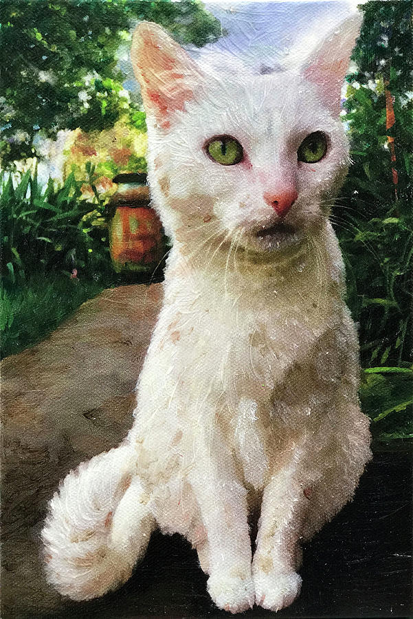 White Cat in Garden by Portraits By NC
