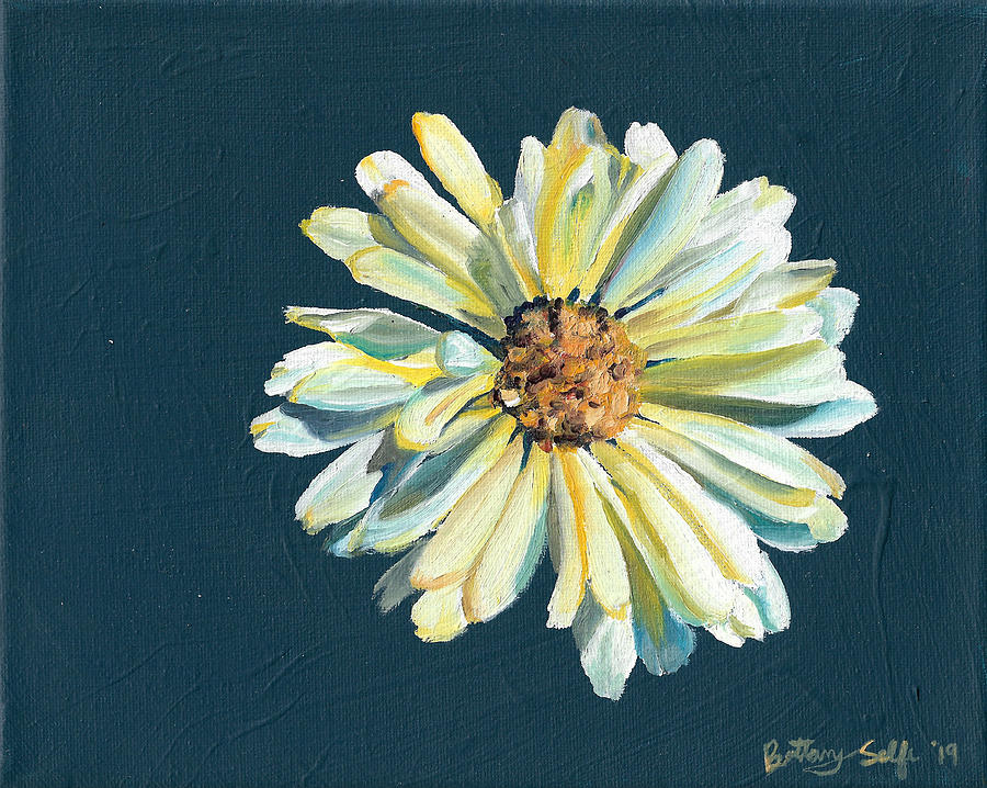 White Daisy by Brittany Bert Selfe