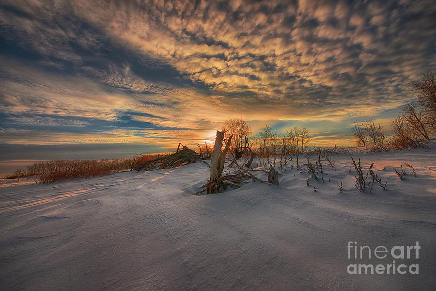 Canada Photograph - White Desert of Canada by Ian McGregor