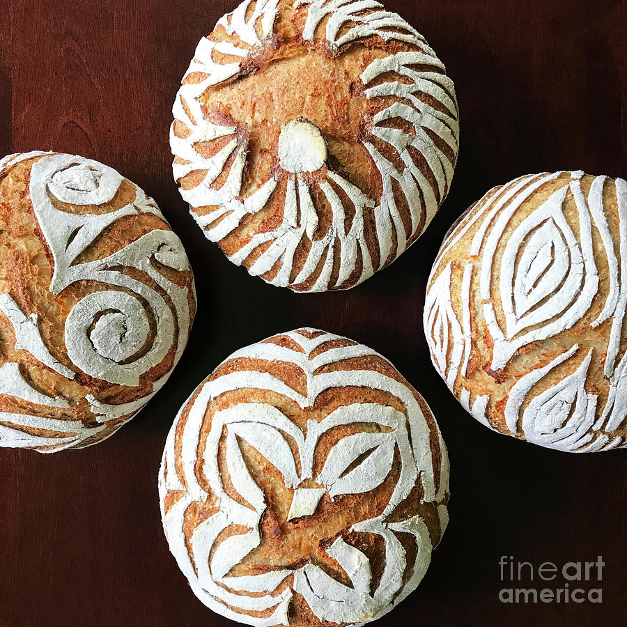 White Flour Dusted Sourdough With 4 Score Designs. 6 by Amy E Fraser