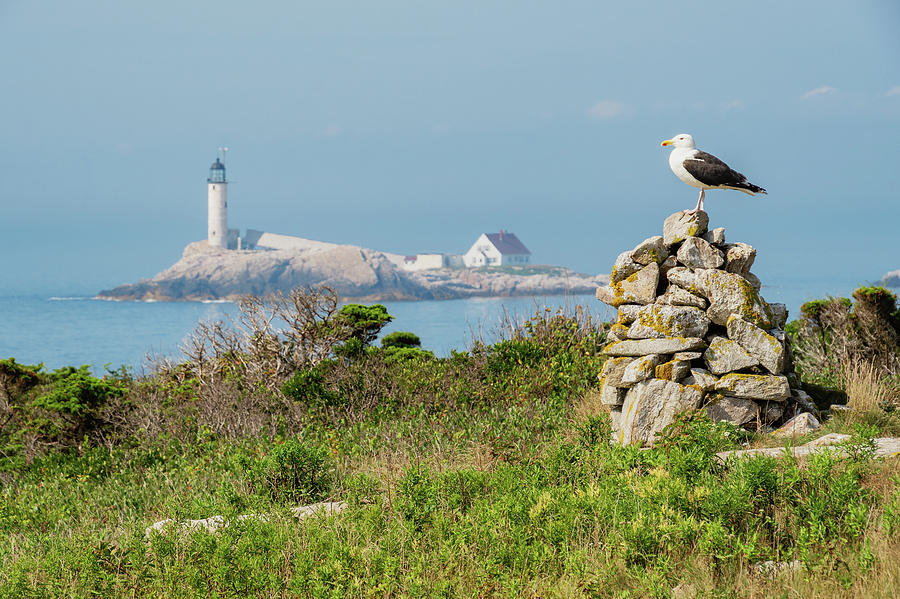 White Island Lighthouse, Isles of Shoals, New Hampshire by Dawna Moore Photography