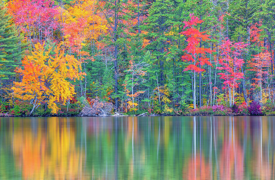 White Lake State Park by Juergen Roth