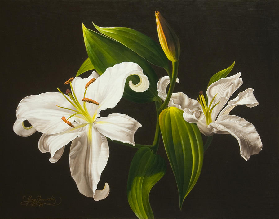 Floral Painting - White Lilies by Gary  Hernandez