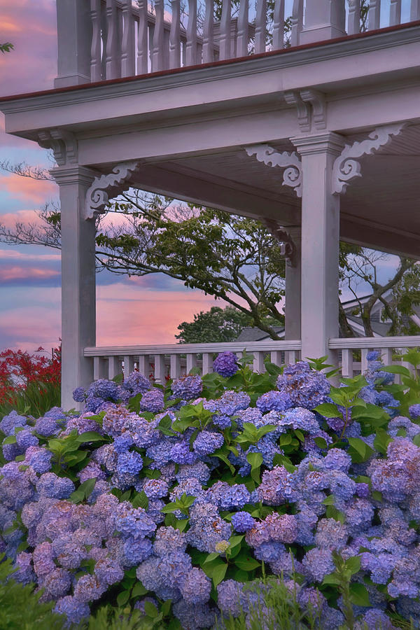 White Porch And Hydrangea Photograph