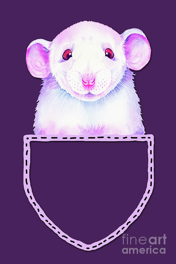 White Rat In Pocket Painting