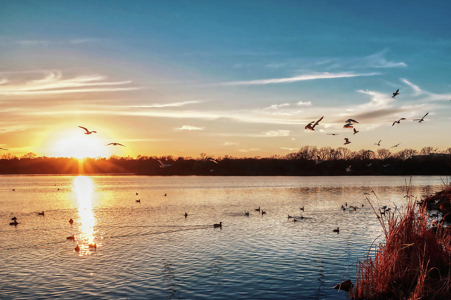 White Rock Lake Dallas 011420 by Rospotte Photography