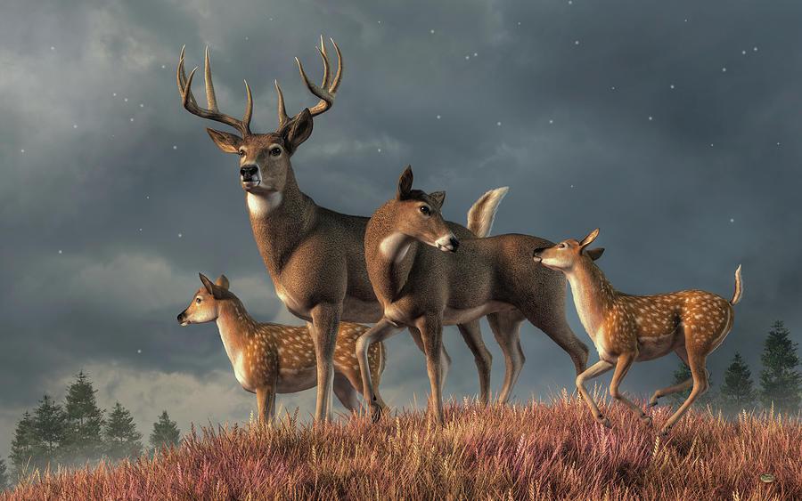 White Tailed Deer Family Digital Art
