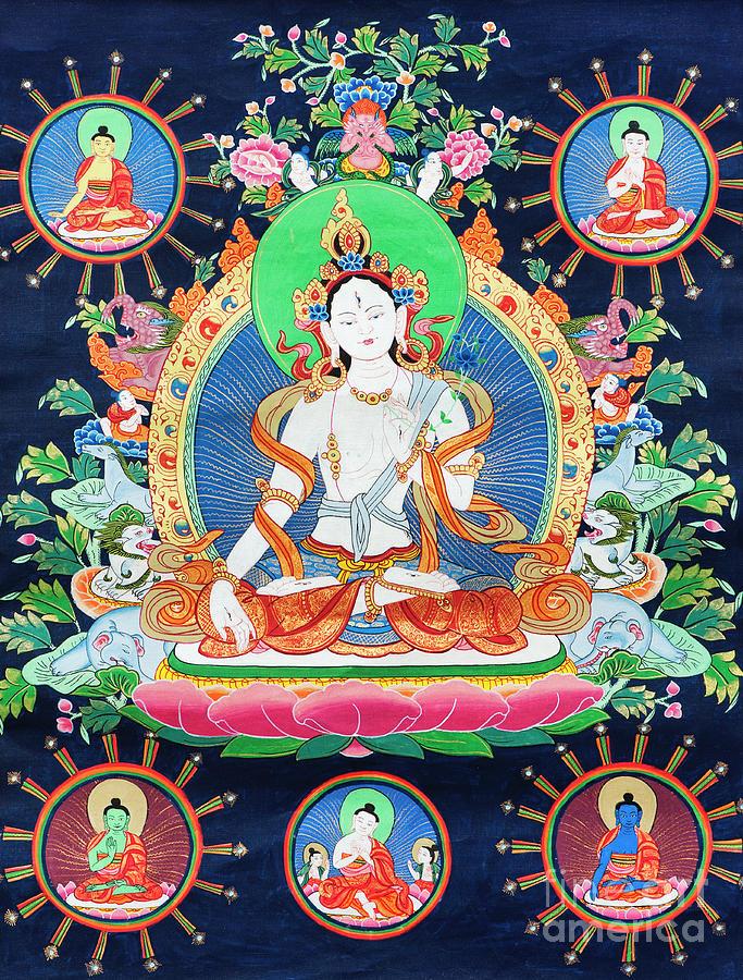 White Tara Buddhist Thangka by Tim Gainey